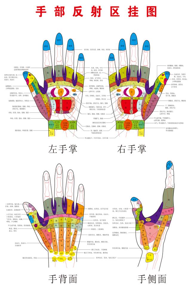 手部反射区示意图(超大高清)